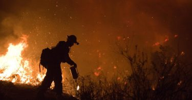 FEMA_-_33311_-_Fire_crew_memeber_fighting_Poomacha_wildfire_in_California.jpg