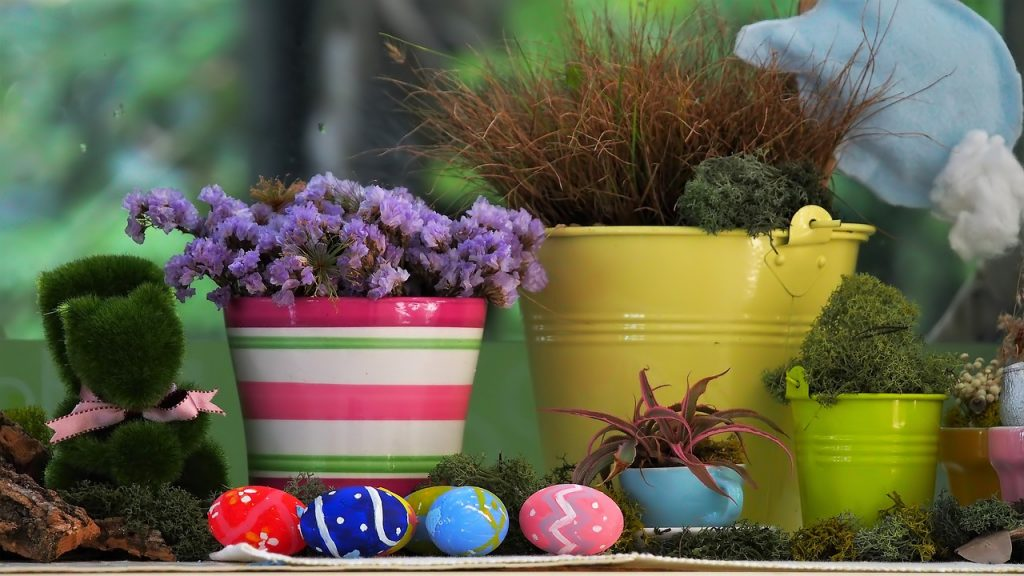 garden flowers, kettle mag